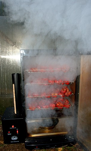 Fatalii S Growing Guide Smoking Chiles With Bradley Smoker